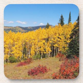 Dessous de verre de couleur de chute du Colorado