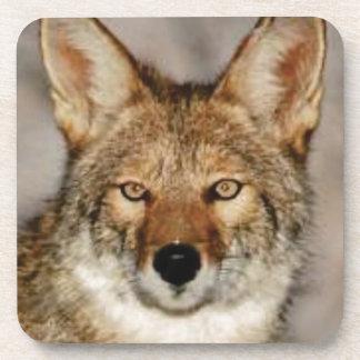 Dessous-de-verre de coyote fin