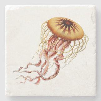 Dessous de verre de méduses de Haeckel Dessous-de-verre En Pierre
