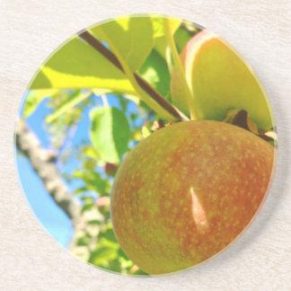 Dessous de verre du Vermont Apple