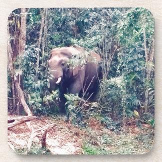 Dessous-de-verre Éléphant en Thaïlande