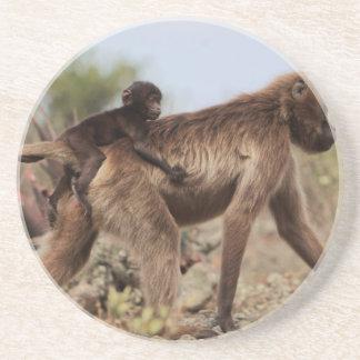 Dessous De Verre En Grès Babouin femelle de gelada avec un bébé