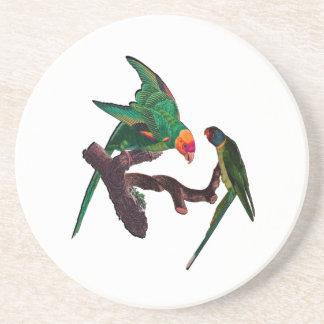 Dessous De Verre En Grès Baie de perroquets