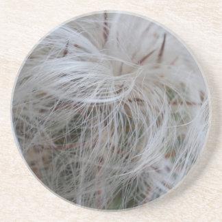 Dessous De Verre En Grès Cactus de vieil homme