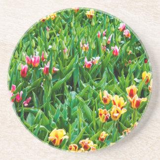 Dessous De Verre En Grès Champ avec les tulipes roses et jaunes