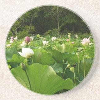 Dessous De Verre En Grès Champ des fleurs de Lotus