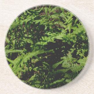 Dessous De Verre En Grès Fougères vertes