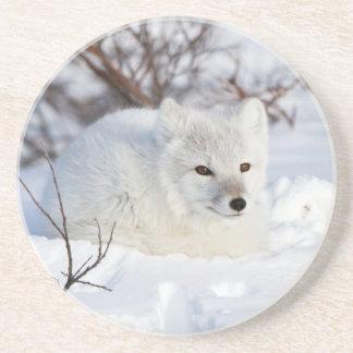 Dessous De Verre En Grès Fox arctique en hiver