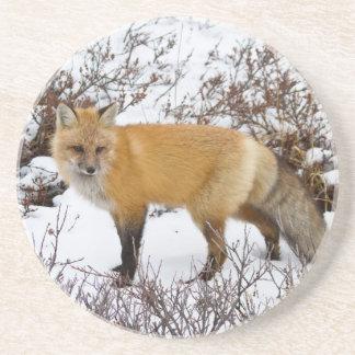 Dessous De Verre En Grès Fox rouge dans la neige en hiver