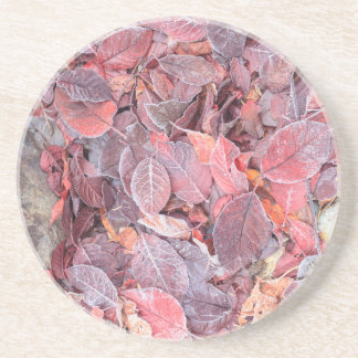 Dessous De Verre En Grès Frost sur le feuille tombé, couleurs d'automne,