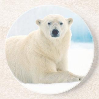 Dessous De Verre En Grès Grand verrat adulte d'ours blanc sur la glace