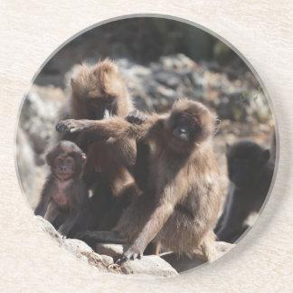 Dessous De Verre En Grès Groupe de babouins de gelada (gelada de