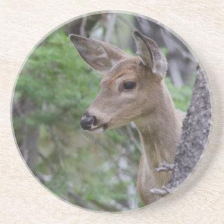 Dessous De Verre En Grès Lac Fishercap de portrait de cerfs communs de