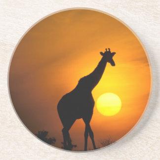 Dessous De Verre En Grès L'Afrique, Kenya, masai Mara. Girafe (girafe