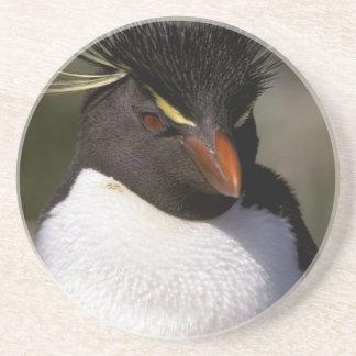 Dessous De Verre En Grès L'Antarctique, îles Sous-Antarctiques, sud 5