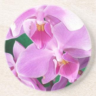 Dessous De Verre En Grès L'orchidée fleurit plan rapproché dans le rose