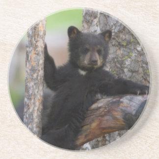 Dessous De Verre En Grès Lounging de CUB d'ours noirs