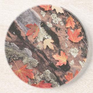 Dessous De Verre En Grès L'Utah, parc national de Zion, motifs d'automne