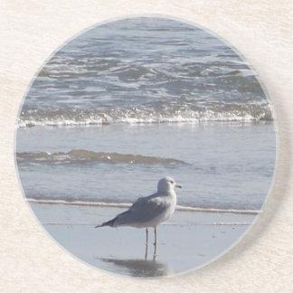 Dessous De Verre En Grès Mouette sur la plage à marée basse sur la Côte Est