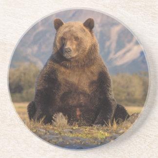 Dessous De Verre En Grès ours brun, arctos d'Ursus, ours gris, Ursus