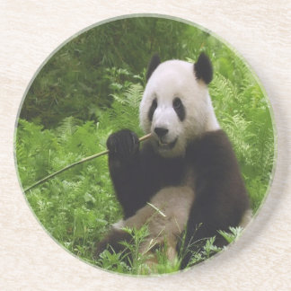 Dessous De Verre En Grès Panda