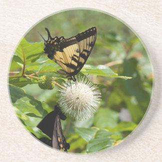 Dessous De Verre En Grès Papillon de machaon de tigre sur le fleur sauvage