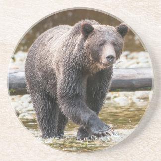 Dessous De Verre En Grès Pêche de Brown ou d'ours gris (Ursus Arctos)