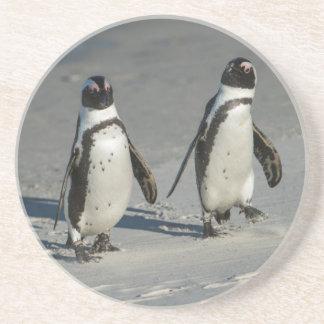 Dessous De Verre En Grès Pingouin africain (demersus de Spheniscus) 2