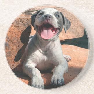 Dessous De Verre En Grès Portrait 4 de chiot du Staffordshire Terrier