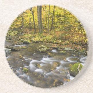 Dessous De Verre En Grès Ruisseau de Sanderson.  Forêt d'état de