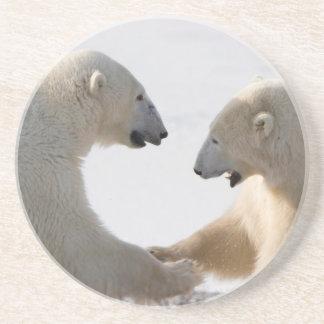 Dessous De Verre En Grès Sparring d'ours blancs
