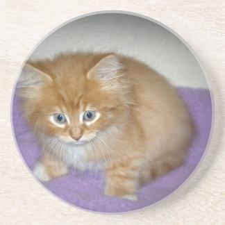 Dessous De Verre En Grès Tache sur ce chaton