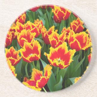 Dessous De Verre En Grès Tulipa Fabio, Keukenhof, Pays-Bas
