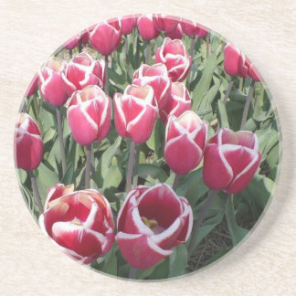 Dessous De Verre En Grès Tulipes roses de Hollande