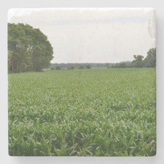 Dessous-de-verre En Pierre À travers le champ de maïs