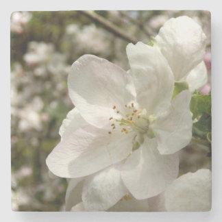 Dessous-de-verre En Pierre Apple fleurissent les dessous de verre en pierre