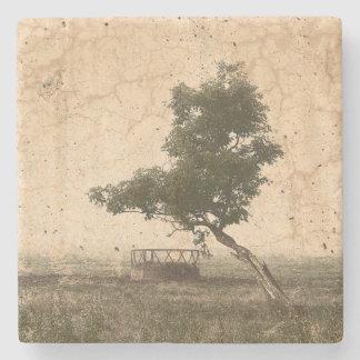Dessous-de-verre En Pierre Arbre texturisé beige rustique sur la photographie