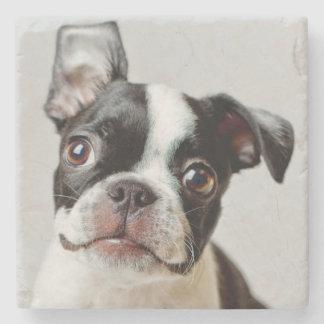 Dessous-de-verre En Pierre Boston Terrier