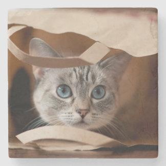 Dessous-de-verre En Pierre Chaton dans le sac d'épicerie
