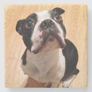Dessous-de-verre En Pierre Chien de Boston Terrier