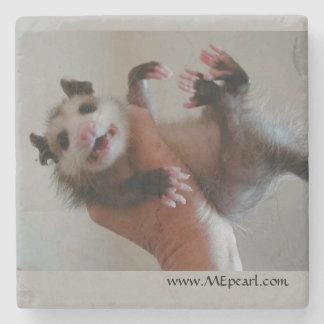 Dessous-de-verre En Pierre Dessous de verre de marbre avec l'opossum