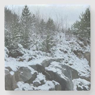 Dessous-de-verre En Pierre Dessous de verre de paysage d'hiver du Michigan
