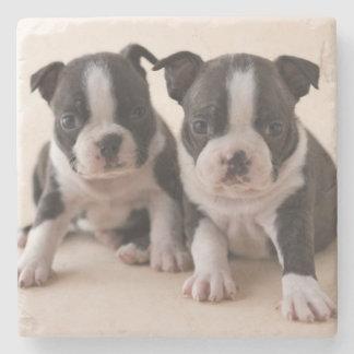 Dessous-de-verre En Pierre Deux chiots de Boston Terrier