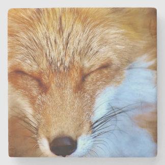 Dessous-de-verre En Pierre Fox