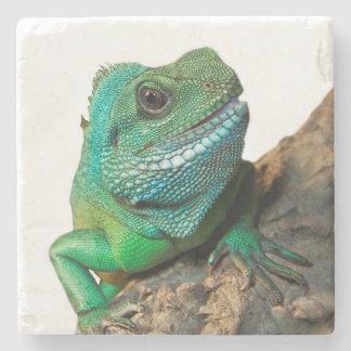 Dessous-de-verre En Pierre Iguane vert
