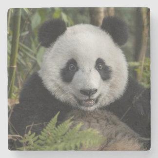 Dessous-de-verre En Pierre Jeune panda heureux, Chine