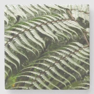 Dessous-de-verre En Pierre Nature vert-foncé des frondes II de fougère