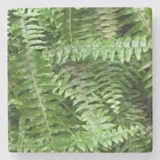 Dessous-de-verre En Pierre Nature verte des frondes I de fougère