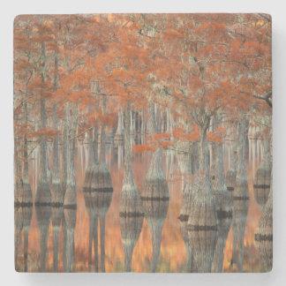 Dessous-de-verre En Pierre Parc d'état des arbres de Cypress   George Smith,