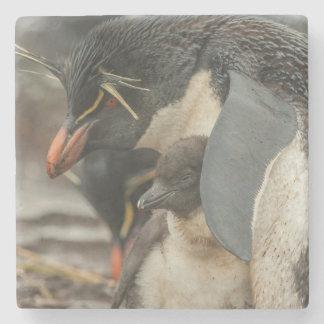 Dessous-de-verre En Pierre Pingouin et poussin de Rockhopper